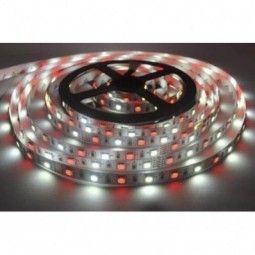 Taśma RGBW (RGB+Biały Zimny) 60 diod/metr LED SMD 5050 ip65 (Wodoodporna)